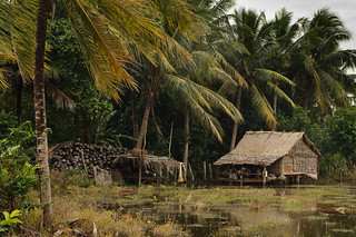 Cambodian Landscape | by goingslowly