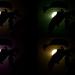 Hiding in darkness (variations)