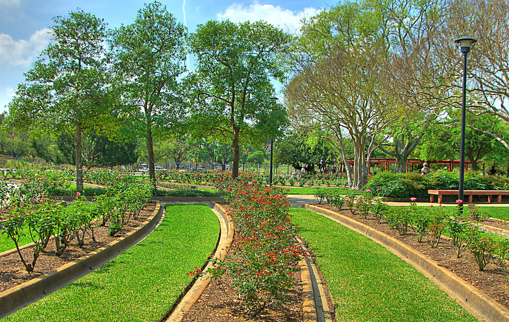 Charming Gardens In Houston #1: 4954149929_f0a267db2b_b.jpg