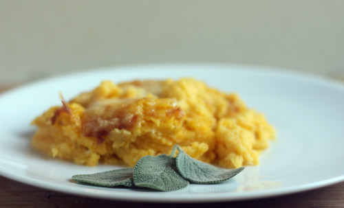 Blogged here: http://tnlocavore.typepad.com/tennessee_locavore/2010/09/camel-crickets-and-a-winter-squash-potato-with-gruyere-cheese-casserole.html | by TNLocavore