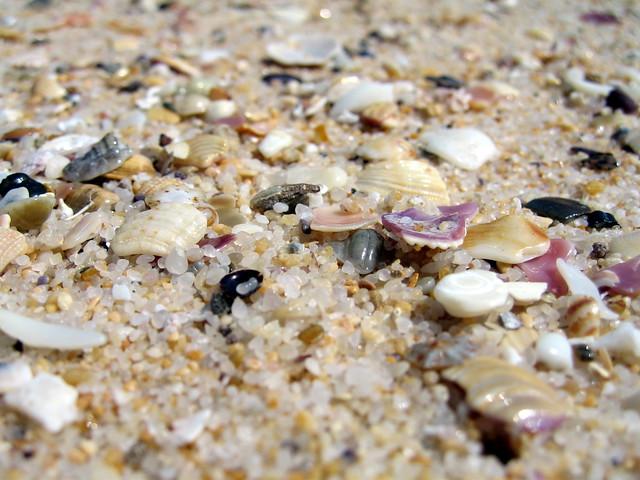 Merimbula Beach Holiday Park Reviews