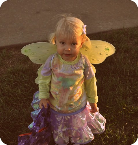 fairy costume | by vickivictoria