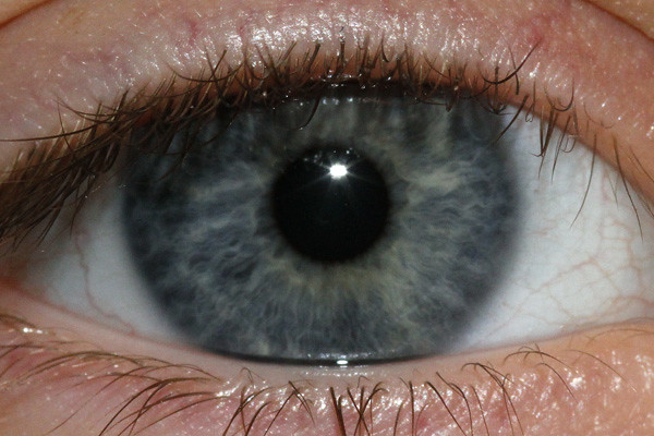 Natural Light Grey Contact Lenses