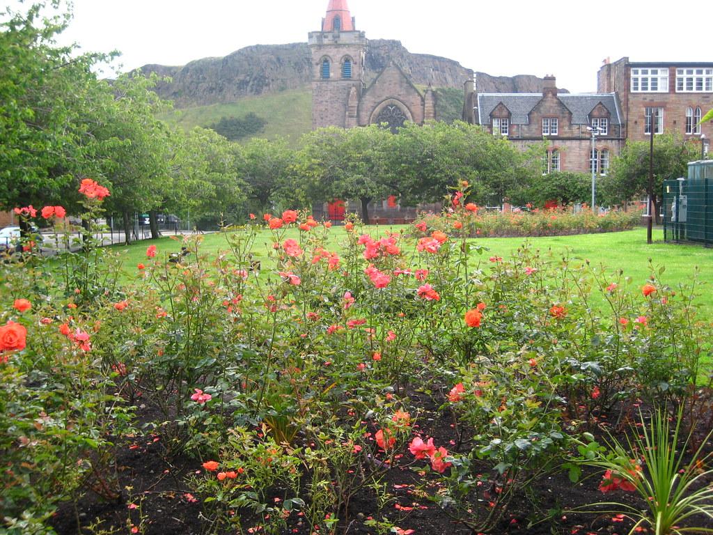 Landscape Gardening Jobs In Edinburgh u2013 izvipi.com