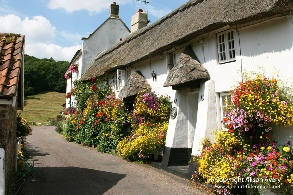 Thatched Cottages Church Row Branscombe Devon More