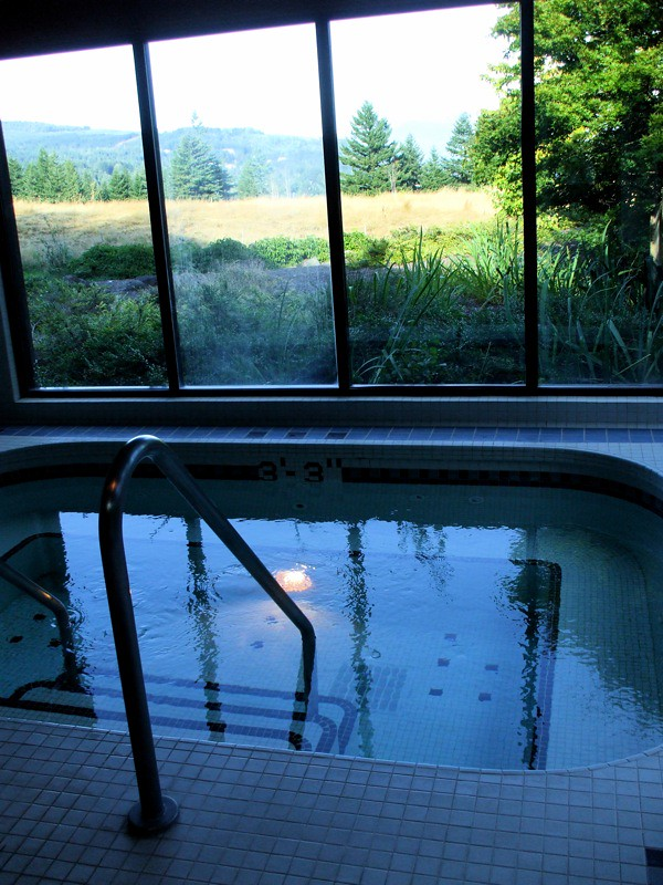 Indoor Hot Tub Room Design