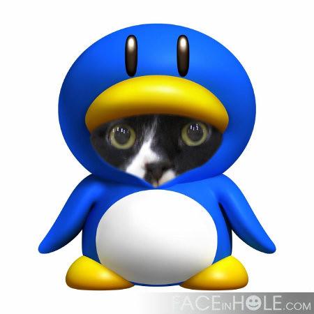 Vincent The Penguin Shelter Challenge Please Vote
