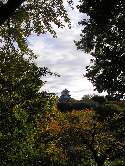 Hamamatsu Castle Park: Autumn leaves (23rd November 2010)