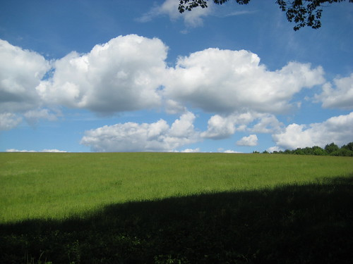 Make your own Windows XP background | by The Brian Kennedy