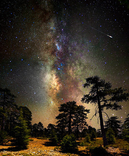 Deep space, deep in the forest | by CostaDinos