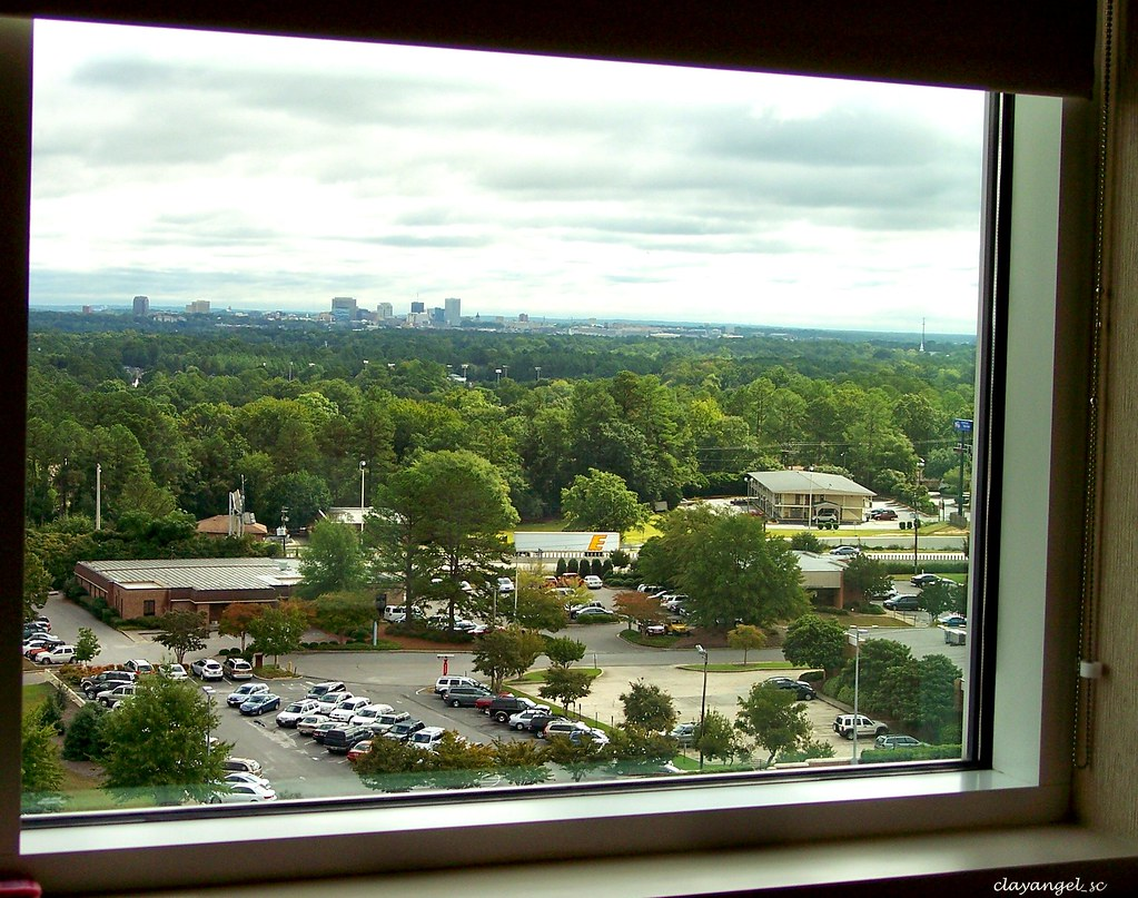 The View... Devon is resting | Columbia's skyline from the ...
