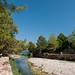 Para chegar na praia em Olympos,  era preciso atravessar esse arborizado vale, que contém uma série de ruínas