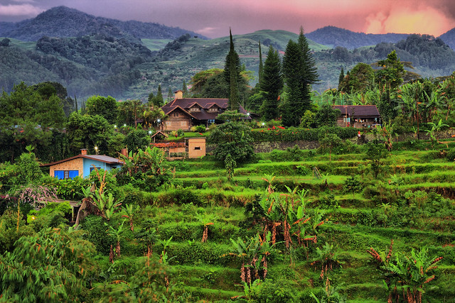 Puncak Indonesia  City new picture : Puncak Indonesia : HDR : | Use : Dynamic Photo HDR .. A… | Flickr ...