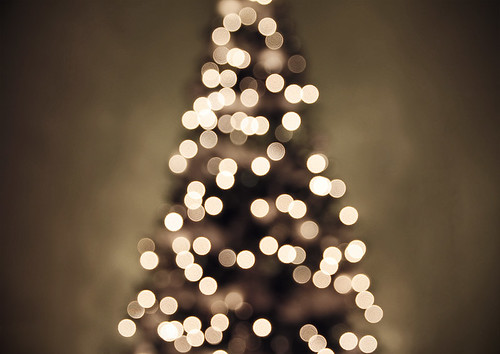 Christmas tree lights II | by Shandi-lee