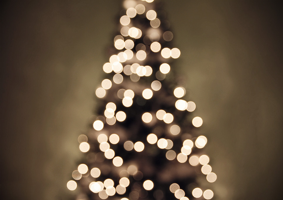 christmas tree lights ii by shandi lee