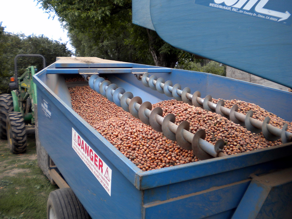 nut harvester image