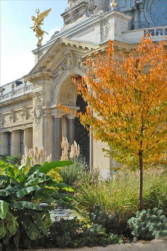 le jardin int rieur du petit palais paris le jardin int flickr. Black Bedroom Furniture Sets. Home Design Ideas