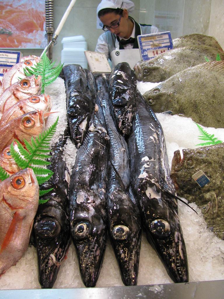 Poisson Sabre - Peixe Espada