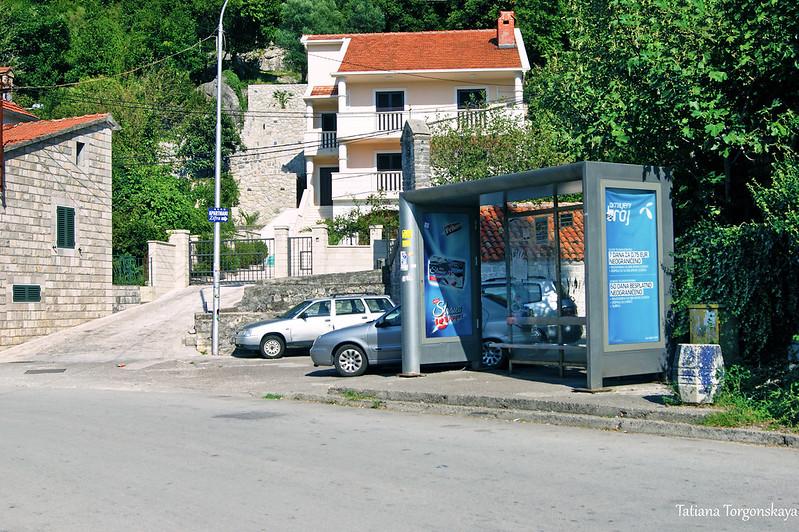 """Остановка автобусов """"Blue line"""" в Лепетане"""