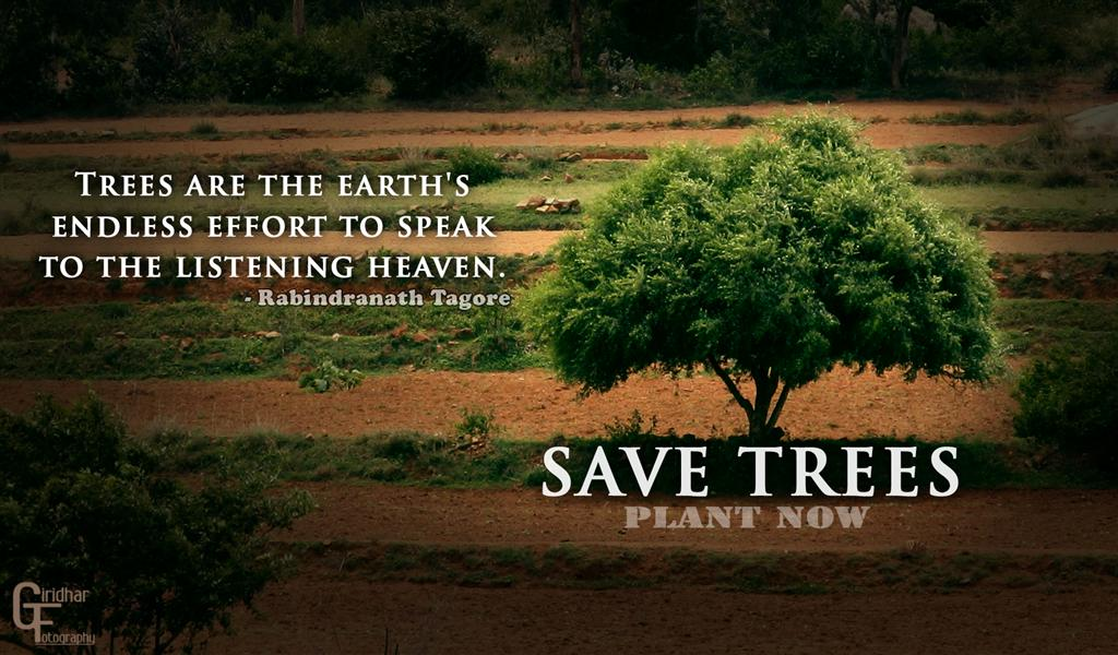 Save Our Earth; Save Our Forest