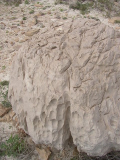 Corrasión eólica - Irisal (Soqotra, Yemen) - 01