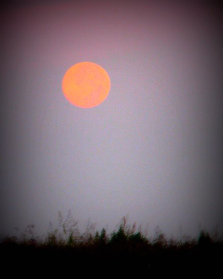 Full Moon Setting At First Sunrise Of Autumn Harvest