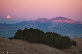 Harvest Moonrise - Day 2 | by Della Huff Photography