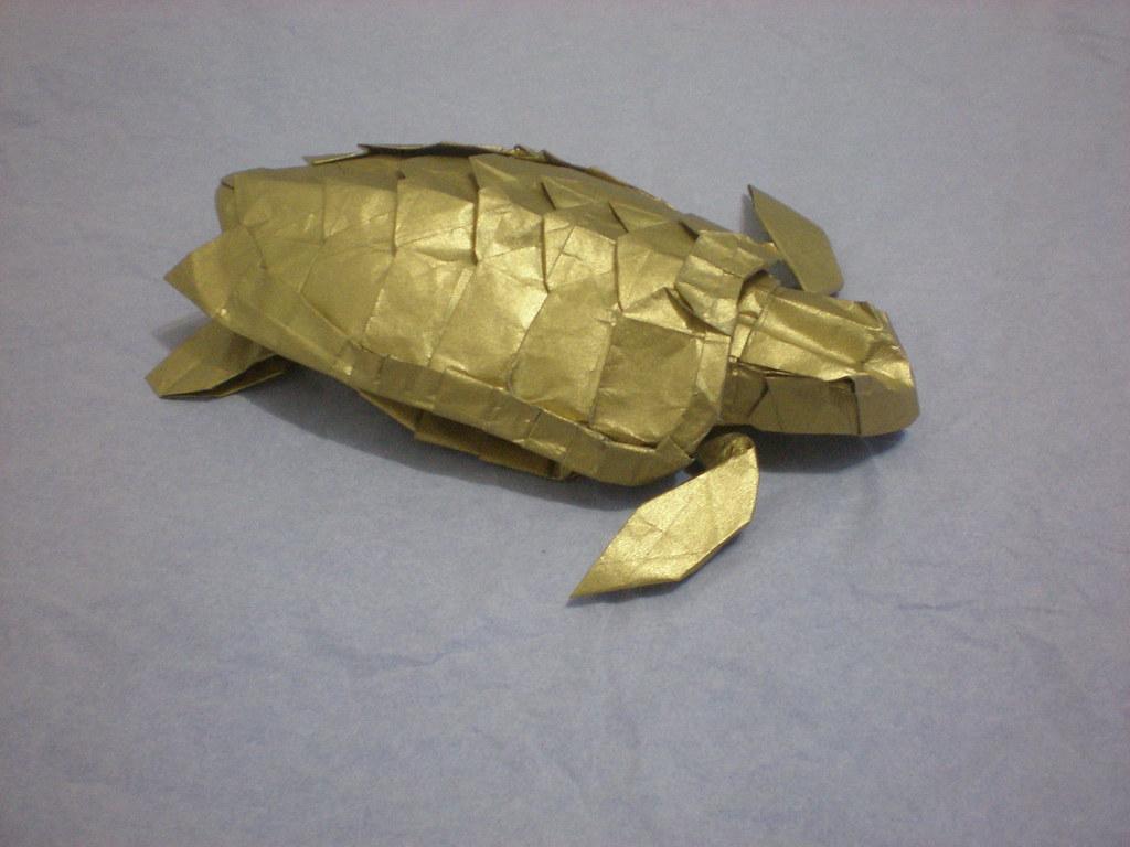 Loggerhead sea turtle designed by satoshi kamiya flickr loggerhead sea turtle by ori hao jeuxipadfo Image collections