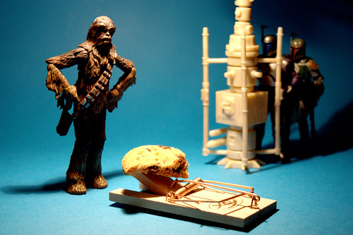 Catch a Wookiee with a Cookie | by Stéfan