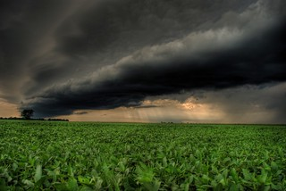 Storm Rolling in Over a Bean Field | by j man.