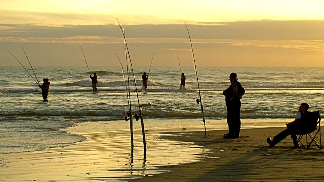 Surf fishing at the point on hatteras island surf for Nc surf fishing report