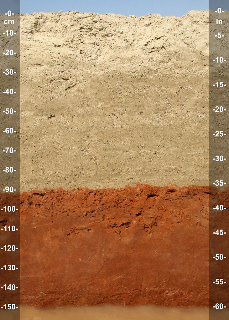 Abu dhabi sandy gypsic aquisalid profile soil for Uses of soil in english