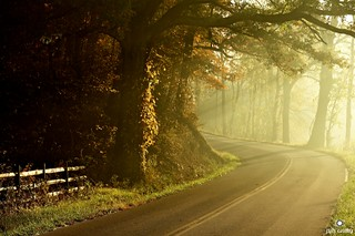 October Road Sunrise by Jim Crotty.jpg | by jimcrotty.com