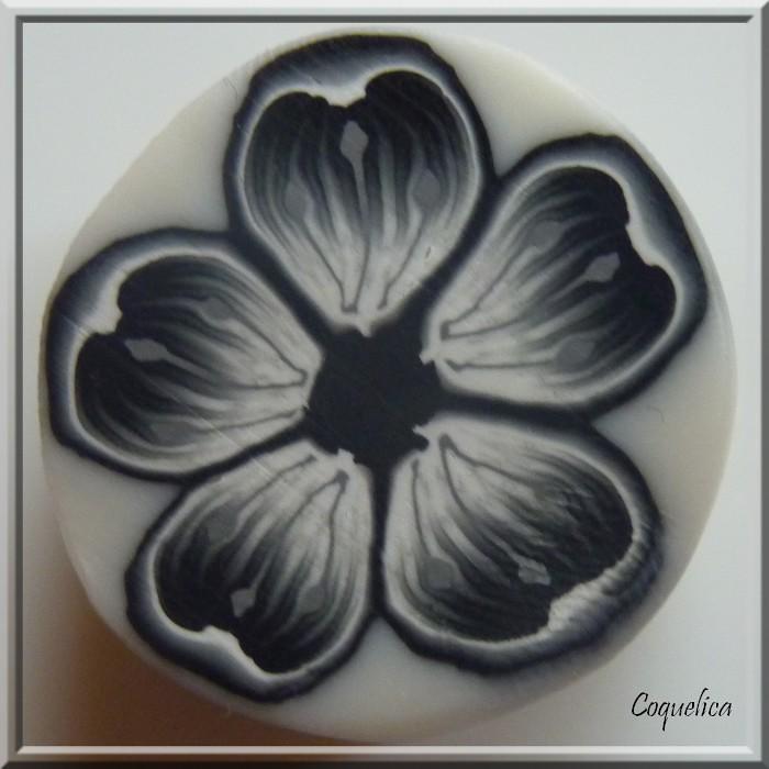 Cane Fleur Coeur Noir Et Blanc Coquelica Flickr