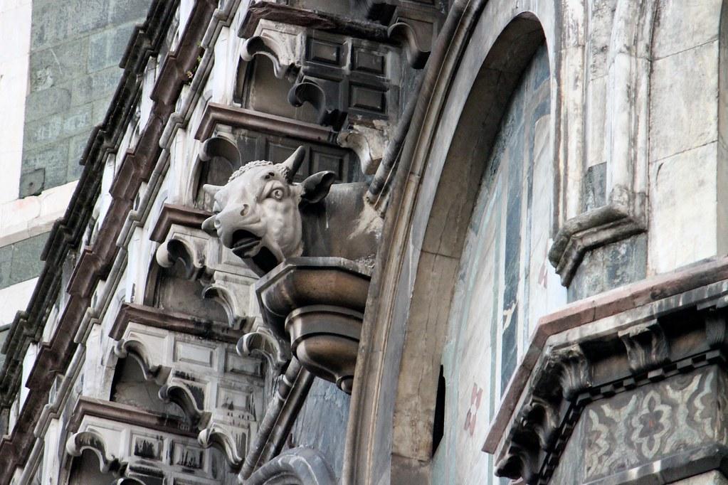 Santa Maria del Fiore: Testa di toro
