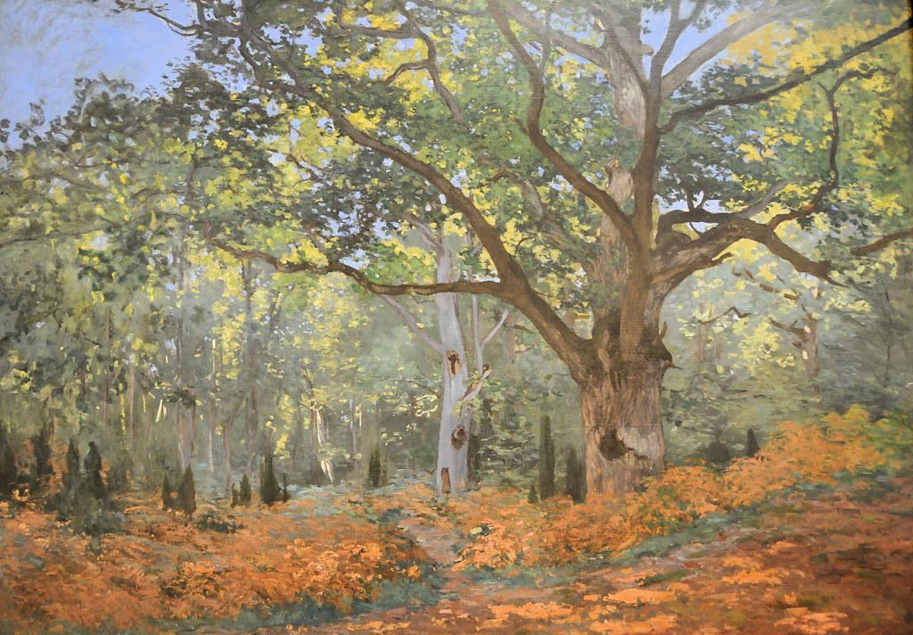 Claude Monet The Bodmer Oak Fontainebleau Forest 1865