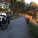 Evening walk#05