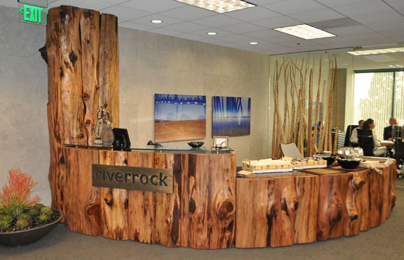 Redwood Tall Tree Quot Riverrock Quot Reception Station Redwood