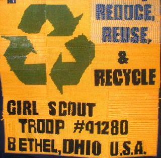 girl scout troop 41280 in bethal ohio they are a part o