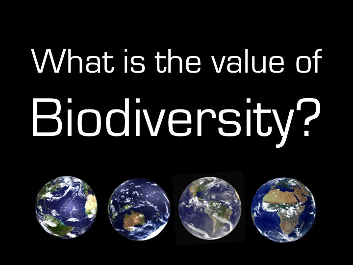 Biodiversity Is An Important Natural Resource Quizlet