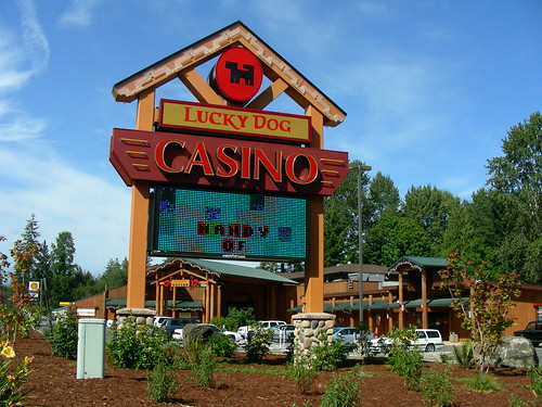 Lucky dog casino washington gambling debates