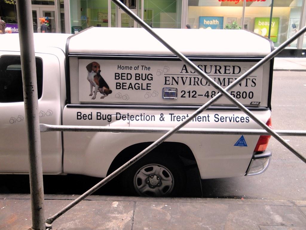Bed Bug Treatment Countrymaz