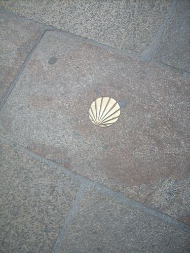 Scallop Shell - Symbol of St. James - Santiago de Composte ...