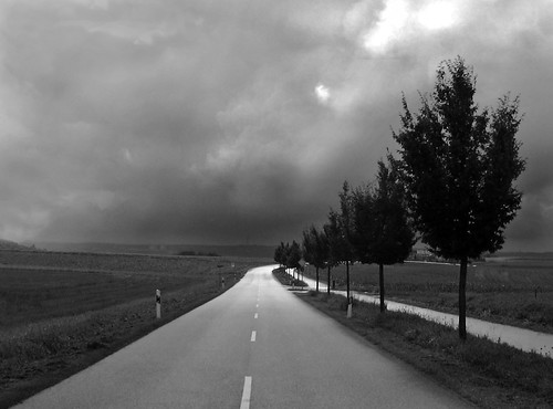 Gloomy day ~ | by rotraud_71
