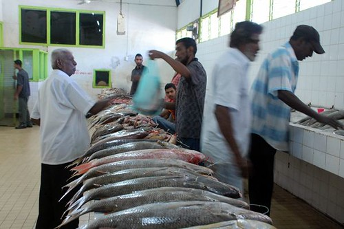 Fish market nadi annie bought a big sweetlips that we for Best fish market nyc