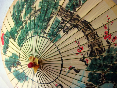 Japanese Umbrella | by FlipMode79