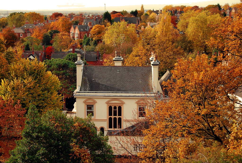 Beautiful house surrounded by Autumn trees