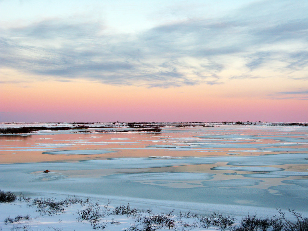 Sunset on the Tundra | Driving back on the tundra buggy from… | Flickr
