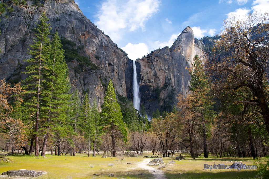 yosemite national park black personals The national park service is preparing a comprehensive management plan for  the merced river, which flows through the heart of yosemite national park.