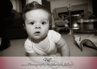 Chase - 6 Months | by Marissa Jill Photography